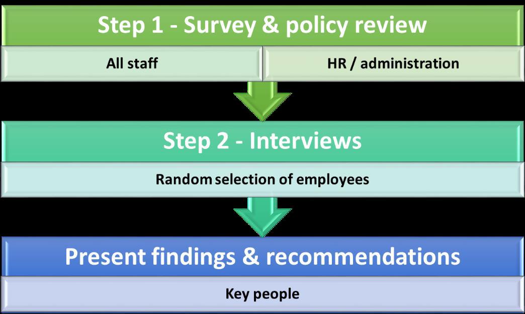 The audit process steps